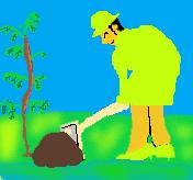 a image